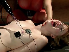 Romantic torture with dildo with girls Aiden Starr together with Dolly Leigh
